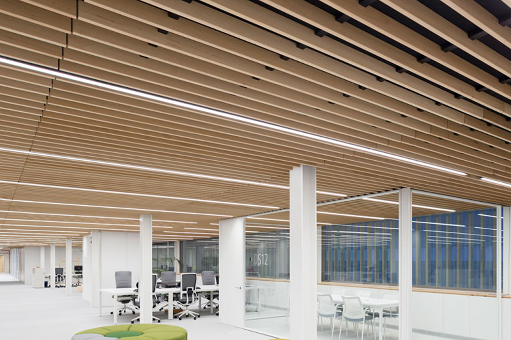 DEST 297 Techos de oficinas Office ceilings Plafonds de bureau