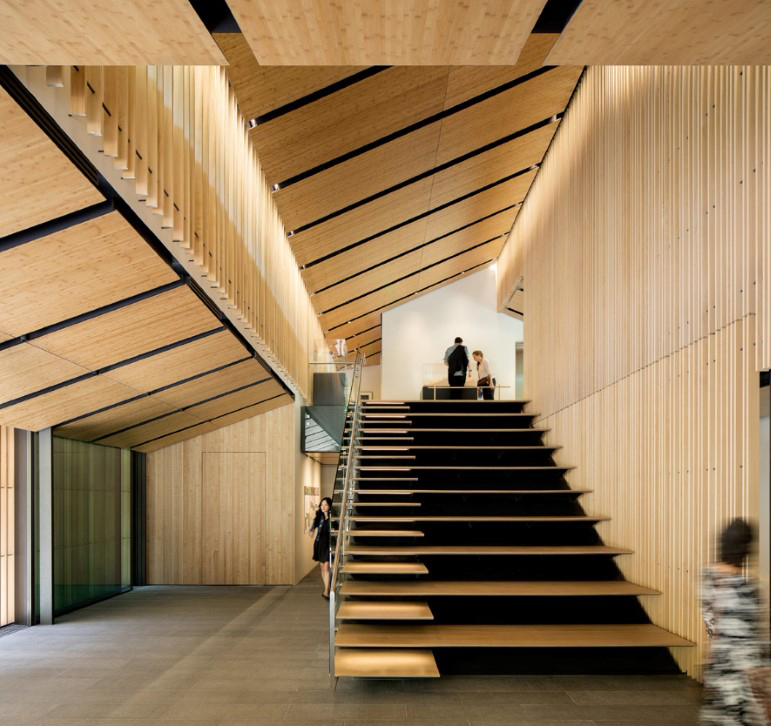 011 techos de madera interiores interior wood ceilings plafonds bois intérieurs
