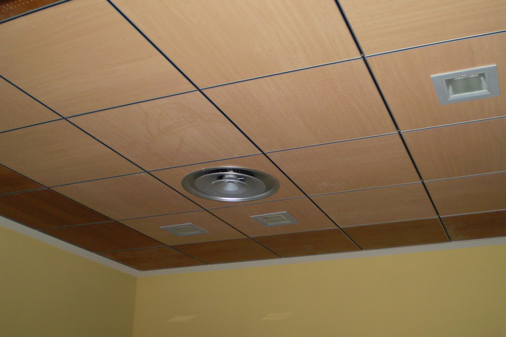 DEST 301 falso techo registrable accessible false ceiling plafond suspendu en bois